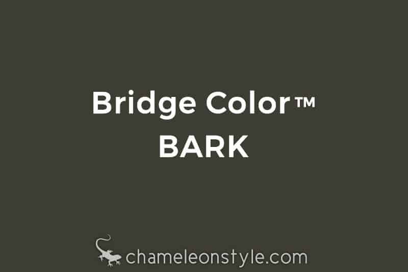 chameleon style bridge color bark dark brown grey