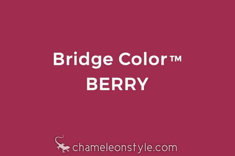 chameleon style bridge color berry magenta