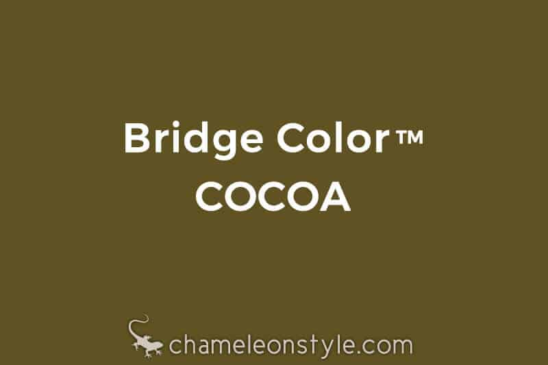 chameleon style bridge color cocoa warm brown