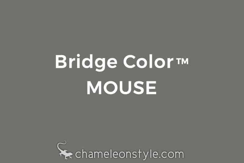 chameleon style bridge color mouse warm grey