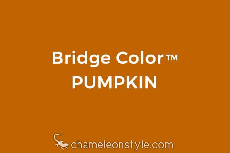chameleon style bridge color pumpkin rusty orange