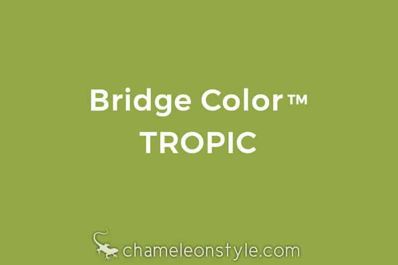 chameleon style bridge color tropic lime green